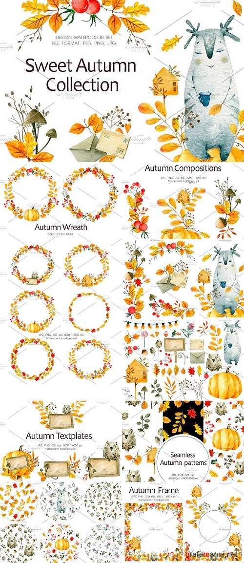 Sweet Autumn Collection - 1987202