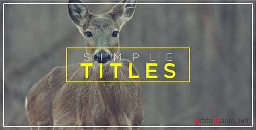Minimal Transitions & Titles - After Effects Project (Videohive)
