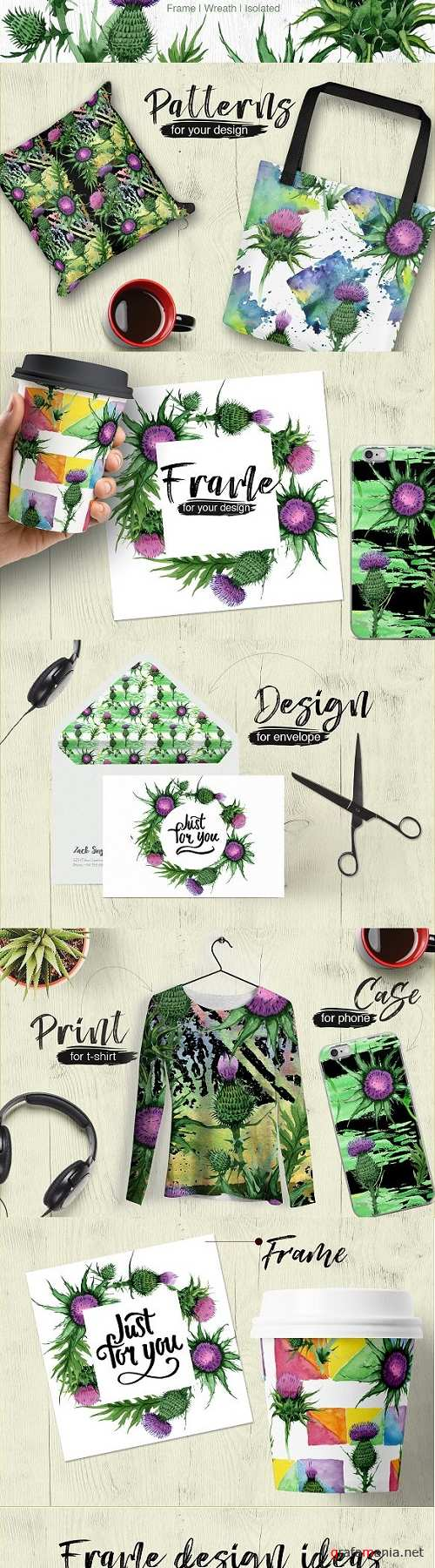 Thistle flowers PNG watercolor set 1984339
