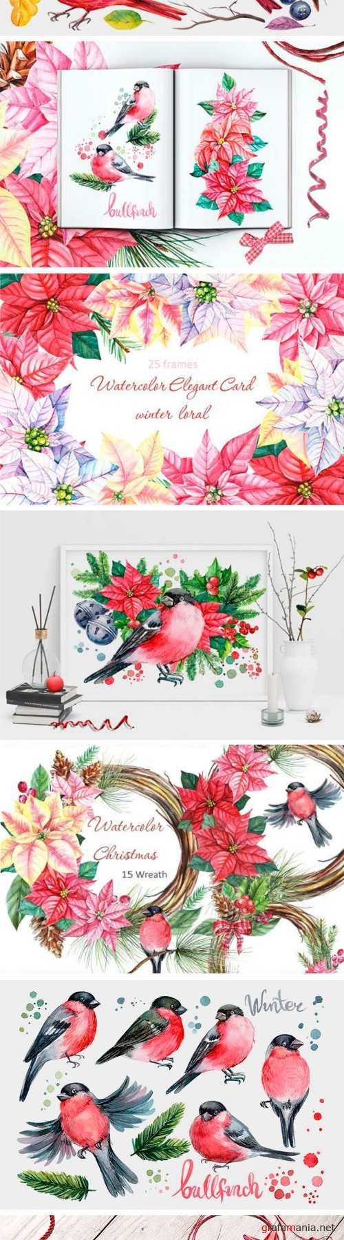 Winter Birds and Floral Illustration - 2010561
