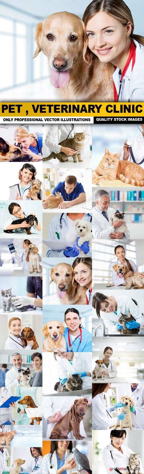 Pet , Veterinary Clinic - 25 HQ Images