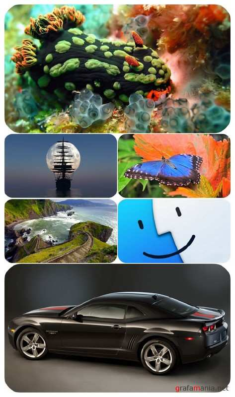Beautiful Mixed Wallpapers Pack 635