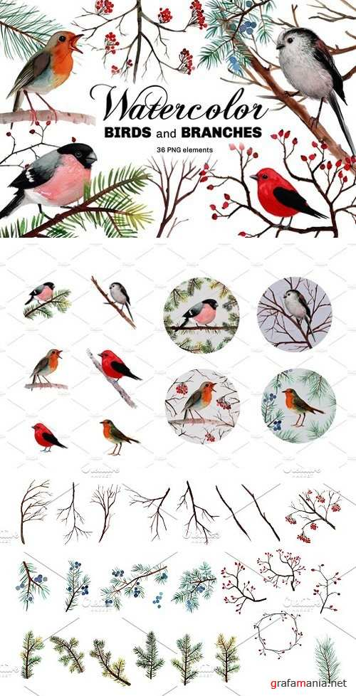 Watercolor birds and branches 2111080