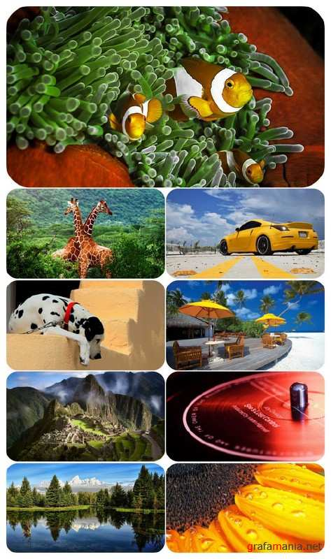 Beautiful Mixed Wallpapers Pack 656