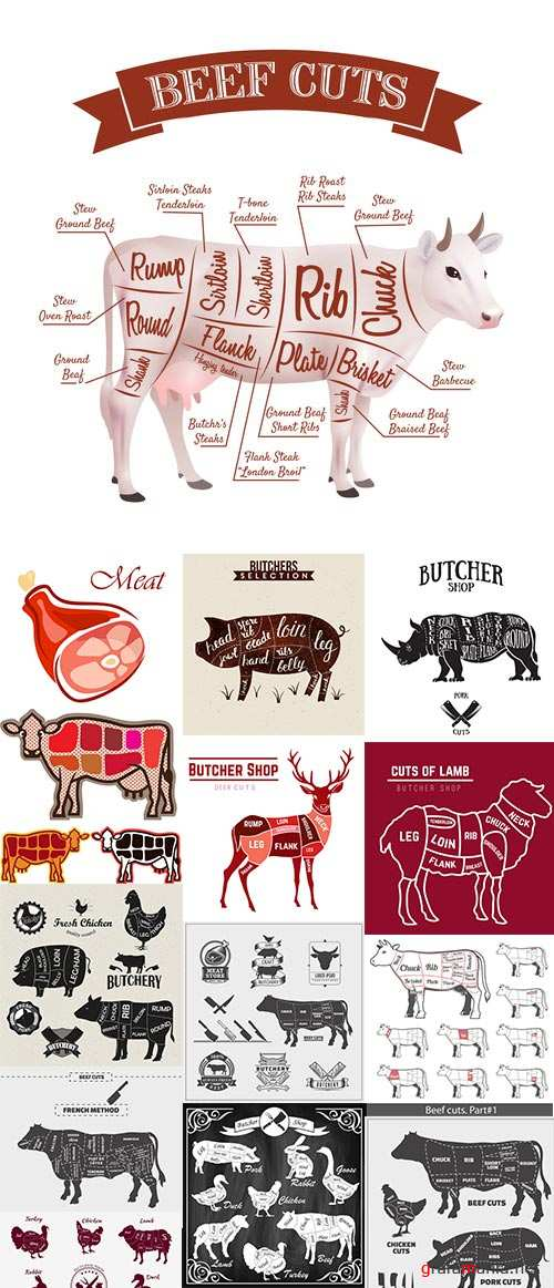 Sirloin Meat, Cattle Meat, Cutting Meat, Cutting Scheme 25xEPS