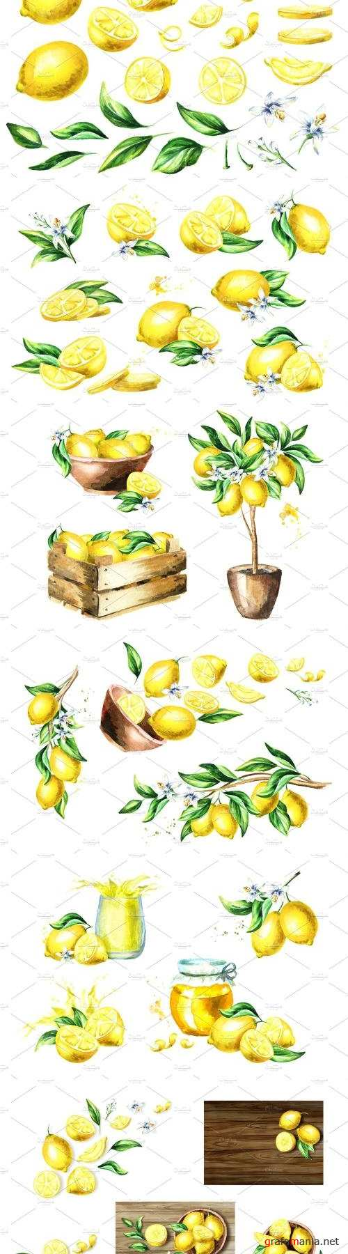 Fresh Lemon. Watercolor Collection - 2182396