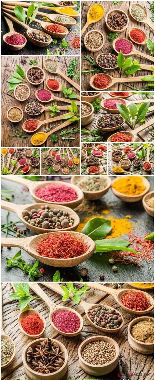 Assortment of colorful spices 10X JPEG