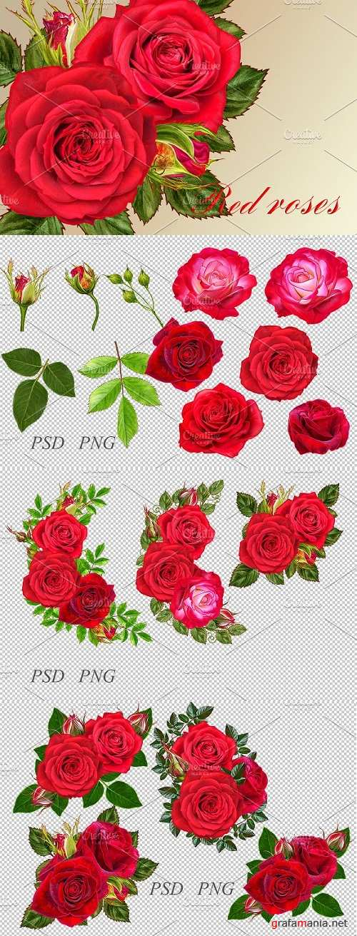 Collection of red roses 2246244