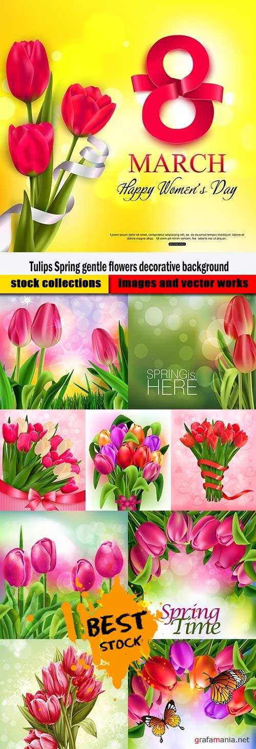 Tulips Spring gentle flowers decorative background