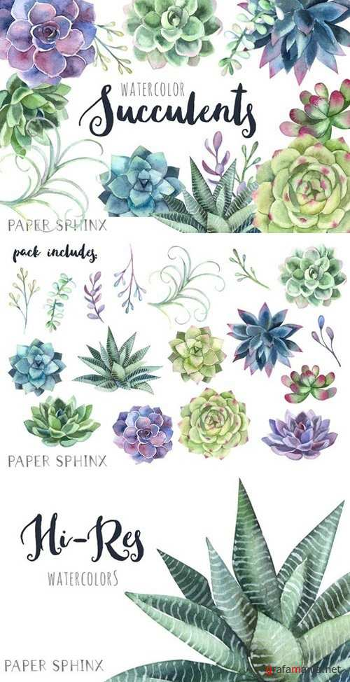 Watercolor Succulents Clipart 2205008
