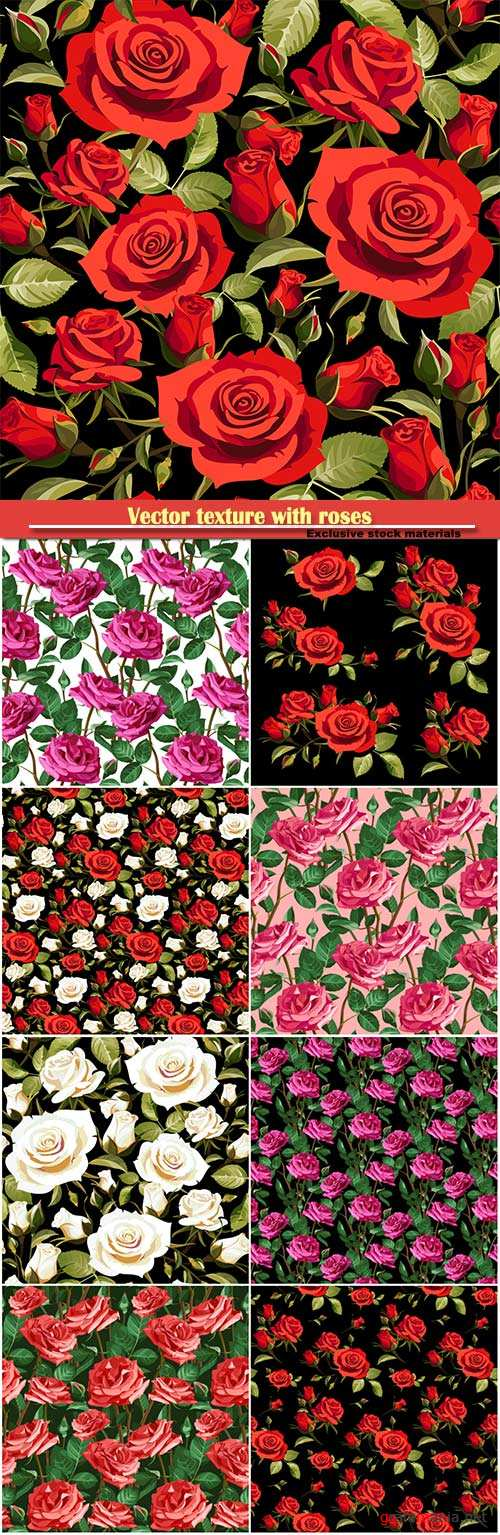 Vector texture with roses