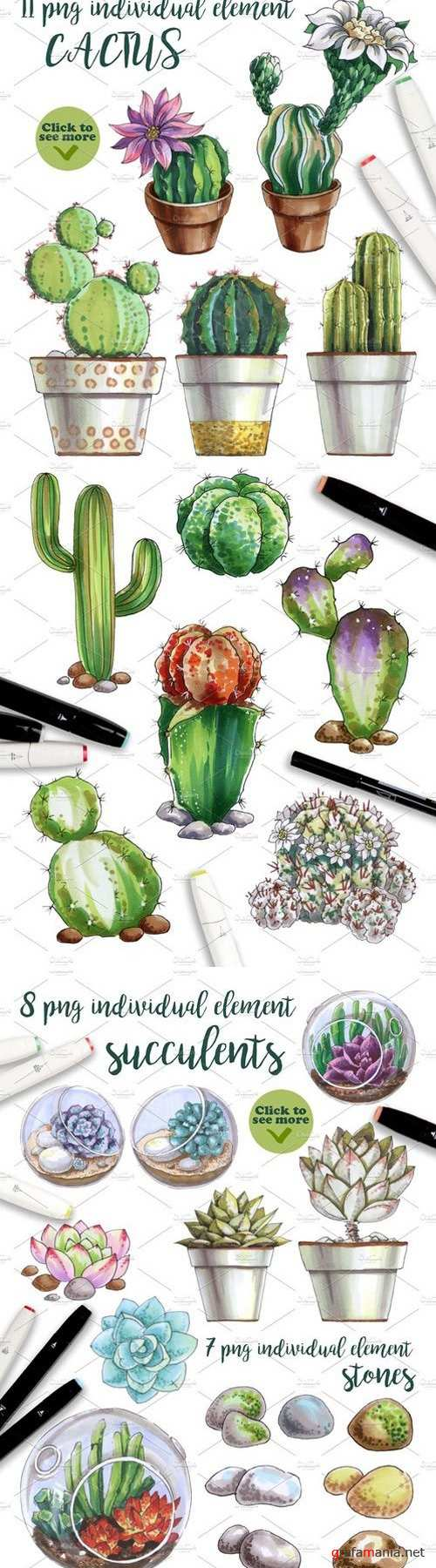 World of cactus and succulents 2231329
