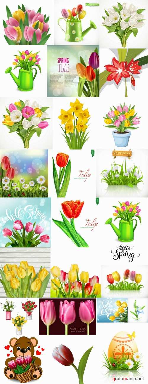 Tulip snowdrop flower basket Spring warmth flyer banner card cover 25 EPS