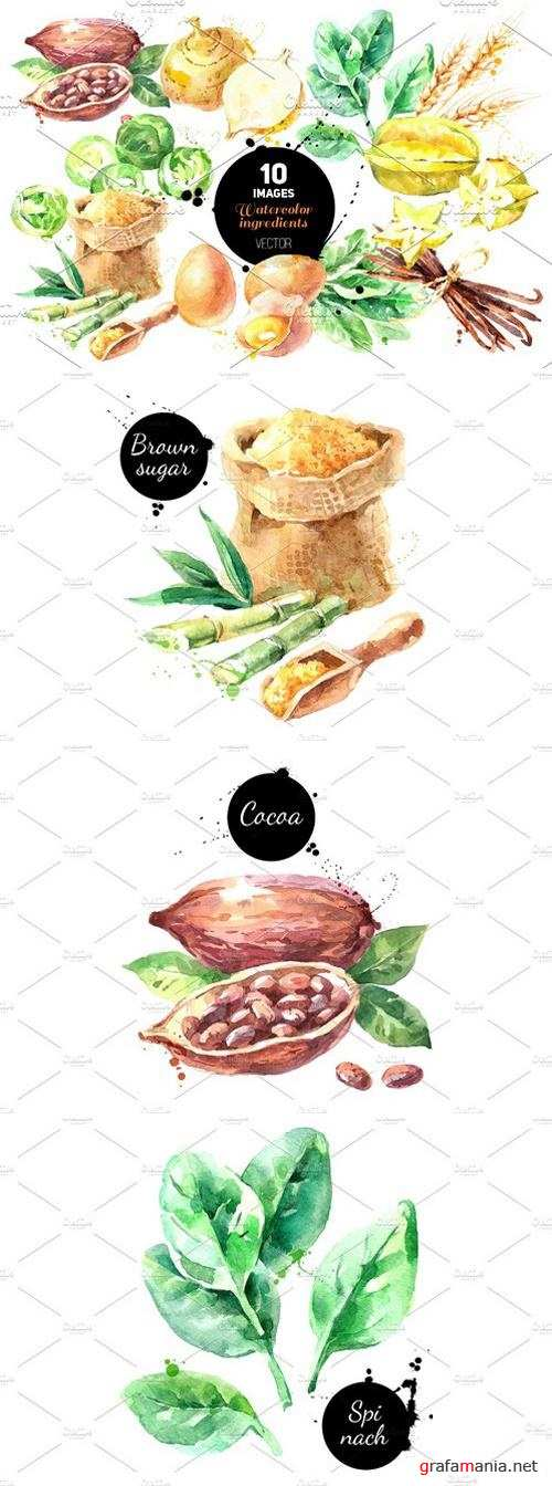 Watercolor Ingredients Vector Set 2351549