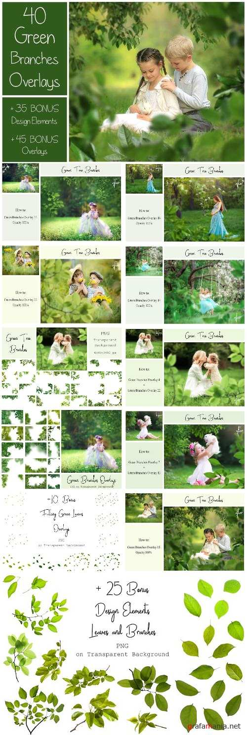 120 Green Tree Branches Overlays - 2382282