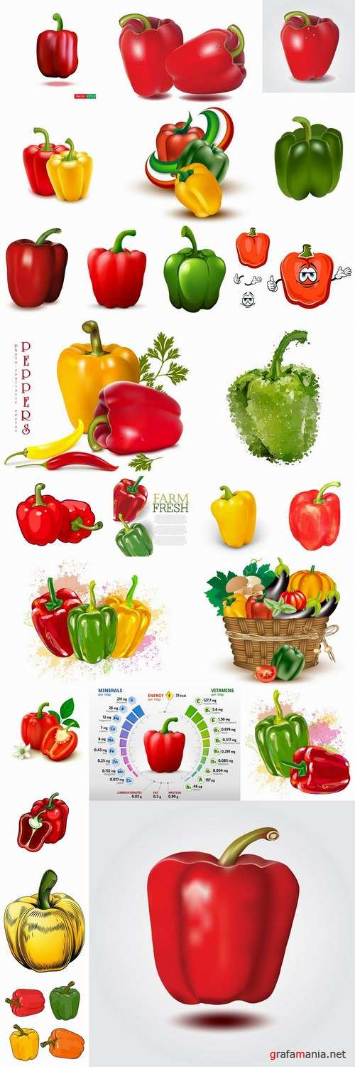 Bell pepper paprika vegetable 25 EPS
