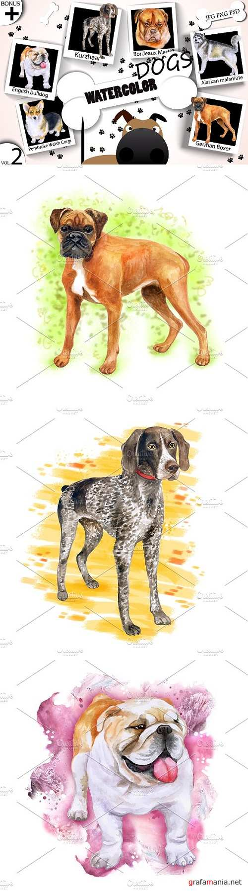 Watercolor Dogs - Collection 2 of 12 - 1717039