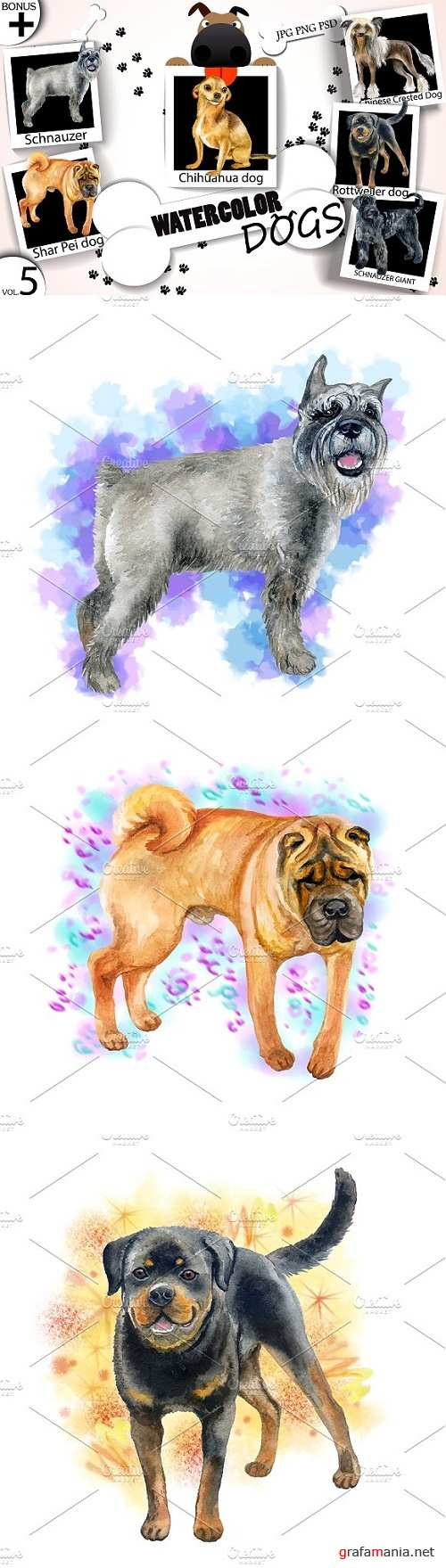 Watercolor Dogs - Collection 5 of 12 - 1717321