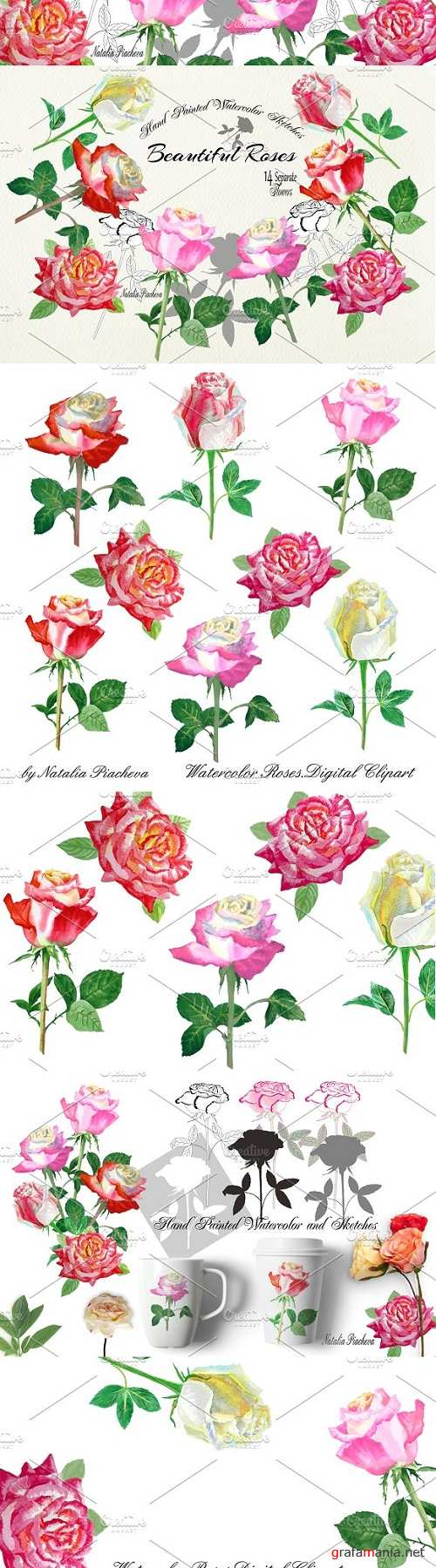 Watercolor Clipart with Roses - 2350502