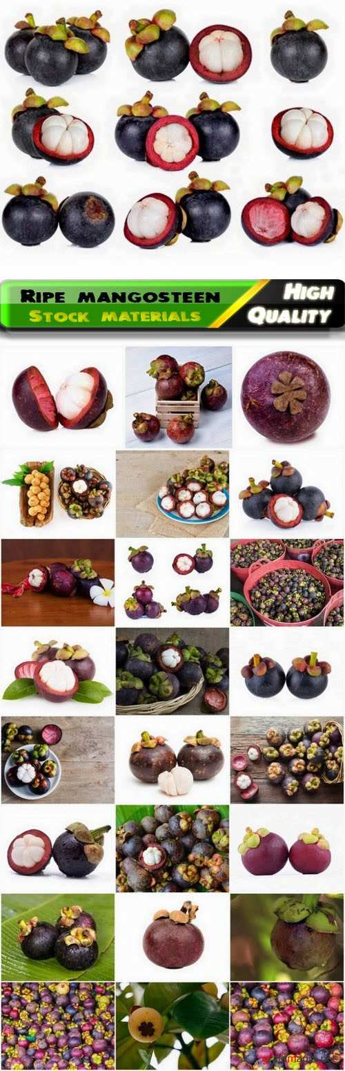 Ripe mangosteen fruit is healthy vitamin food 25 HQ Jpg