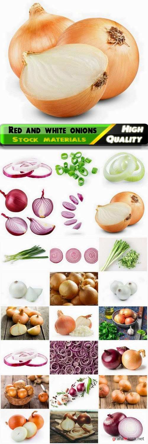 Red and white onions and green onion vegetable 25 HQ Jpg