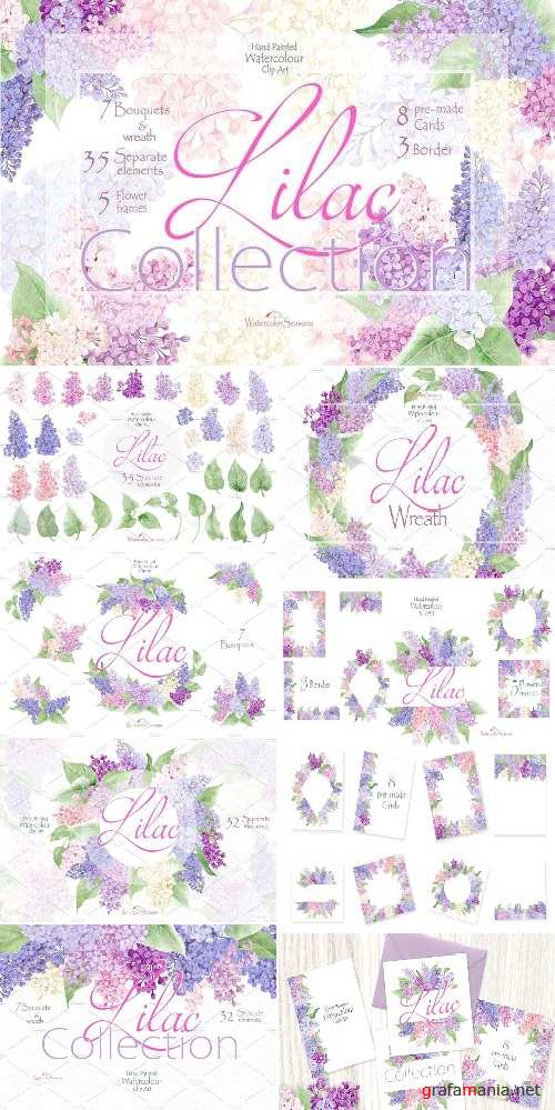 Lilac Collection - 2447193