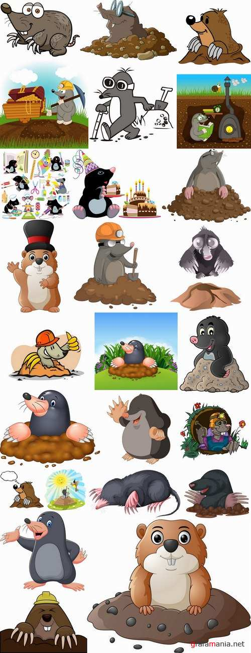 Mole cartoon character for children's book illustration 25 EPS