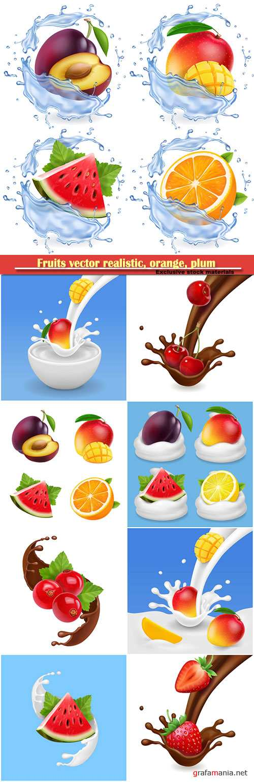 Fruits vector realistic, orange, plum, watermelon and mango set vector illustrations