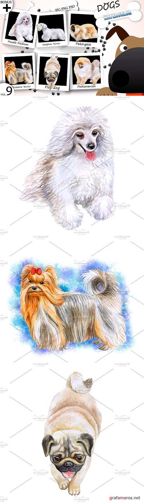 Watercolor Dogs - Collection 9 of 12 - 1749062