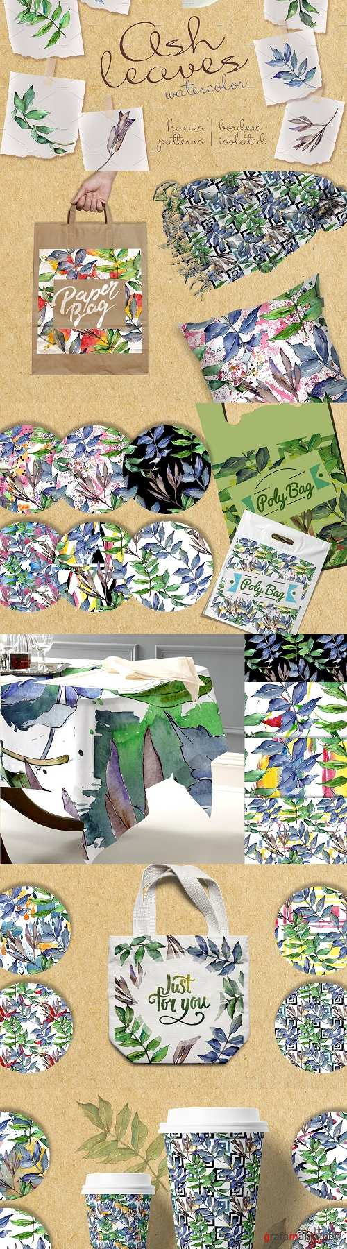 Ash Leaves PNG Watercolor Set - 2396211