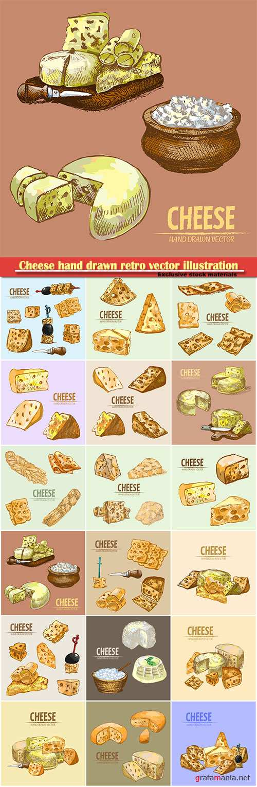 Cheese hand drawn retro vector illustration collection set
