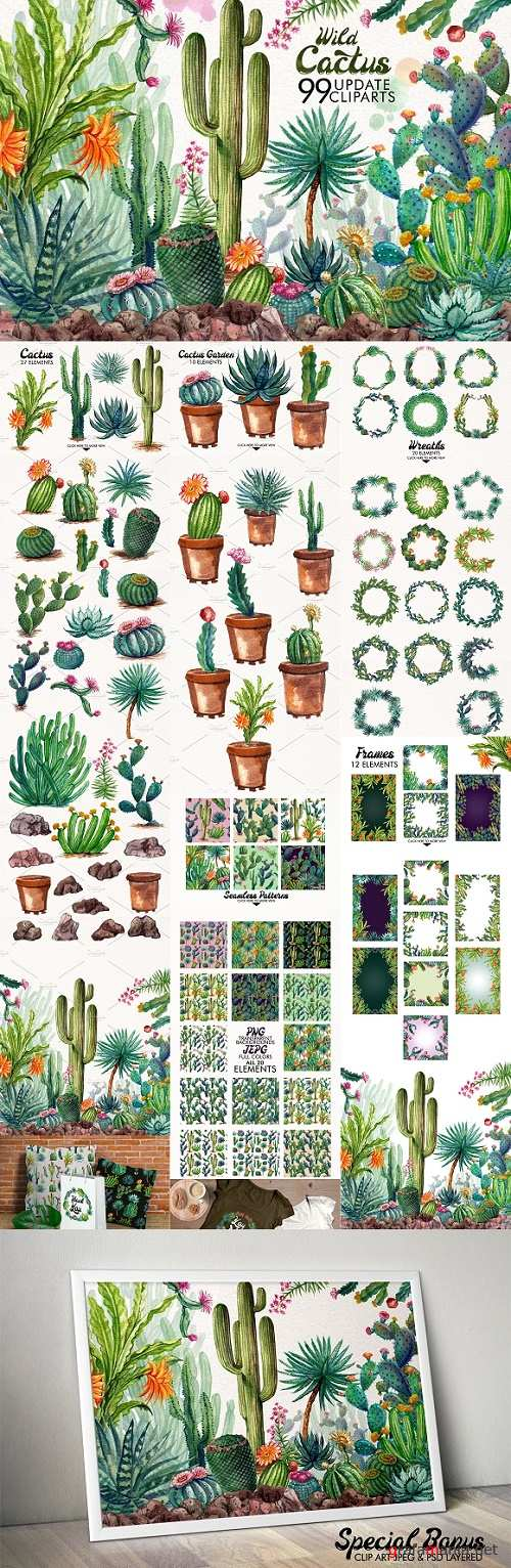 Watercolor Cactuses - 1485736