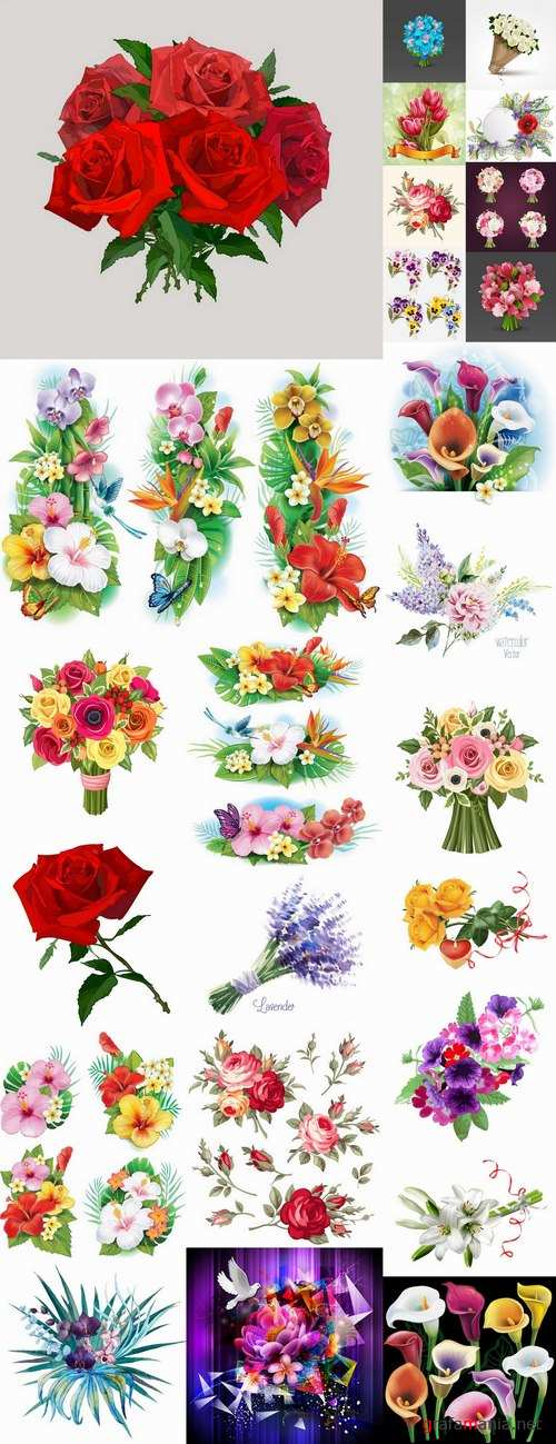 Collection of flowers bouquet of roses painted tulip vase Orchid Carnation 25 EPS