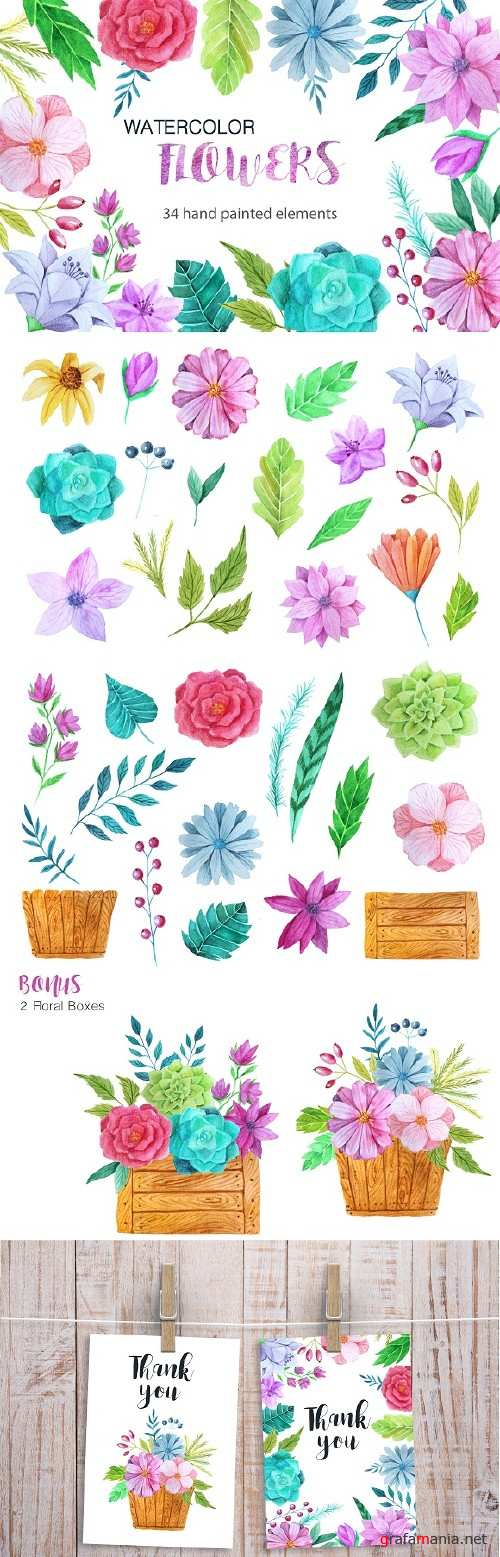 Watercolor Flower Pack - 13963