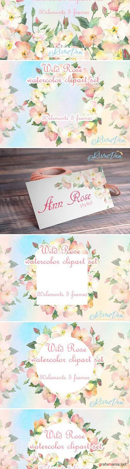 Watercolor wild dog rose clipart set 2515098
