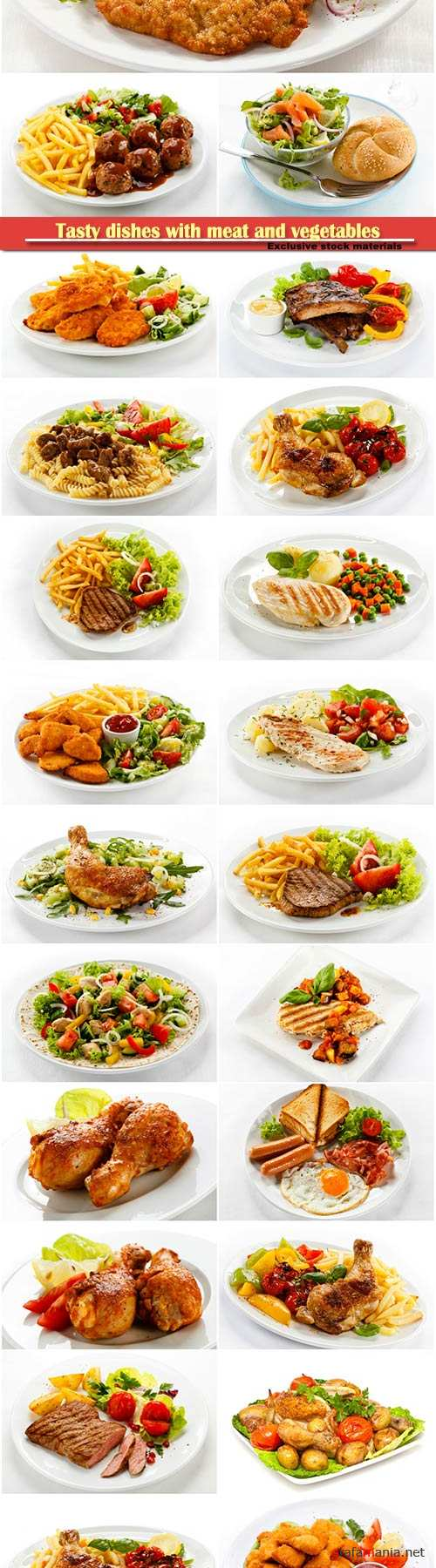 Tasty dishes with meat and vegetables stock set