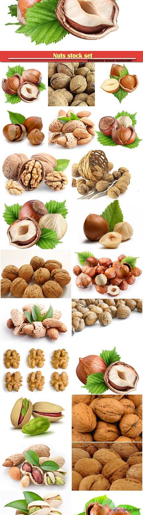 Nuts stock set