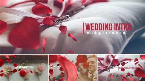 Wedding Intro 14584906 - After Effects Project (Videohive)