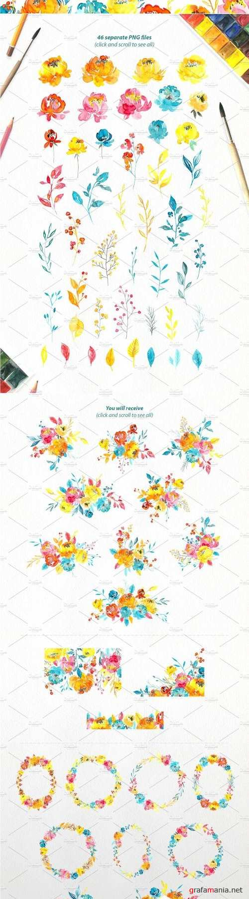 Watercolor Summer Flowers Collection - 2536576