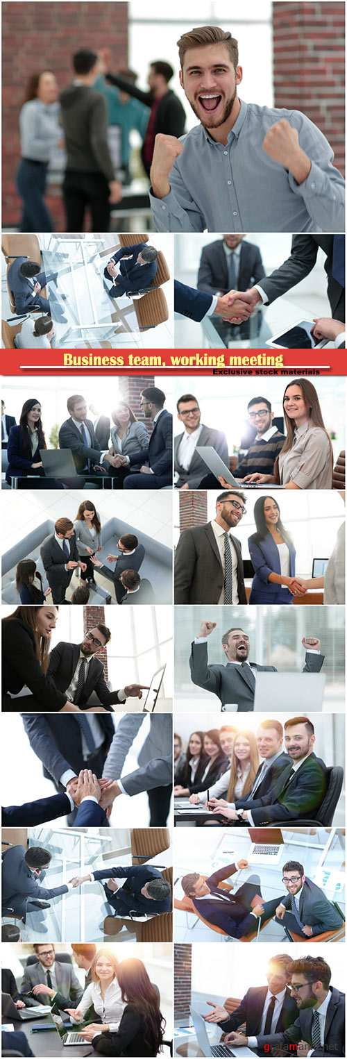 Business team, working meeting, successful partnership in business displayed by shaking hands