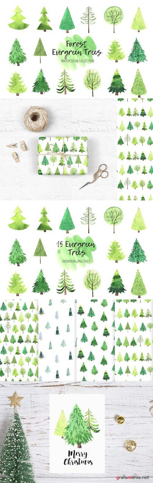 Watercolor Evergreen Trees Set - 3246899