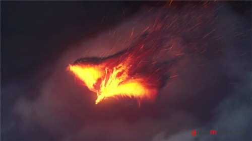 The Phoenix | Fire Reveal - After Effects Project (Videohive)