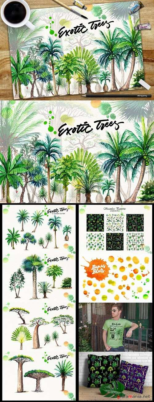 Watercolor Exotic Trees - 1640964