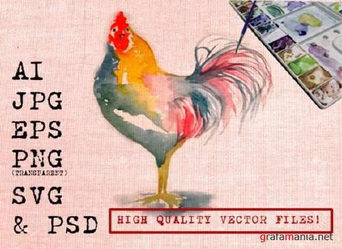 Roosters Watercolors 1