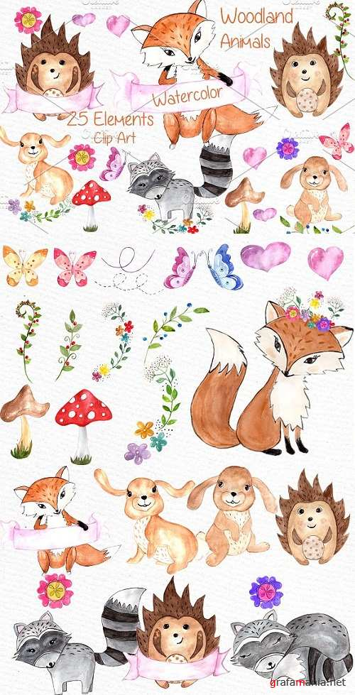 Watercolor woodland animals clipart - 638665