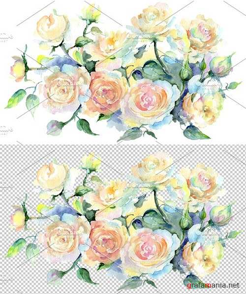 Bouquet or yellow roses Watercolor - 3499518