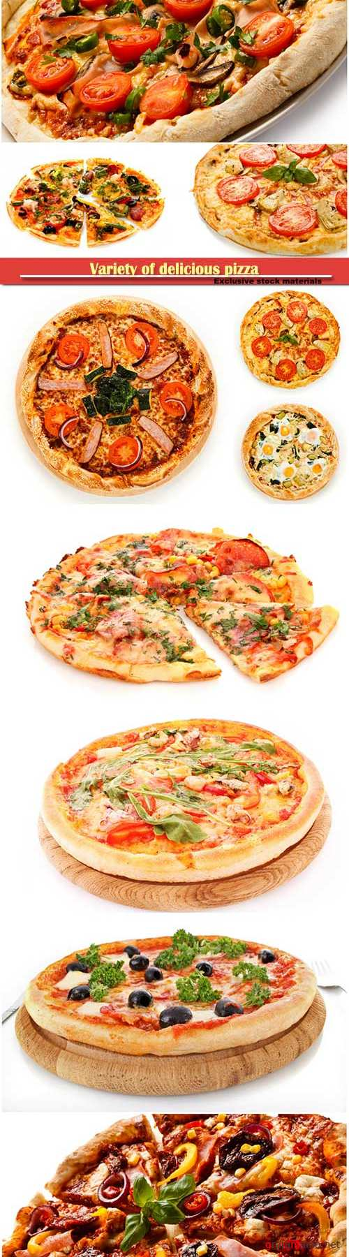 Variety of delicious pizza