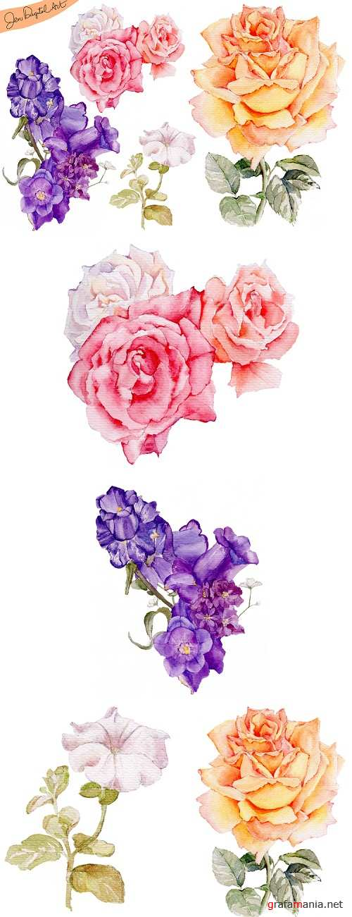 Hand Painted WATERCOLOR FLOWERS - Clip art - PNG-JPEG - 106893