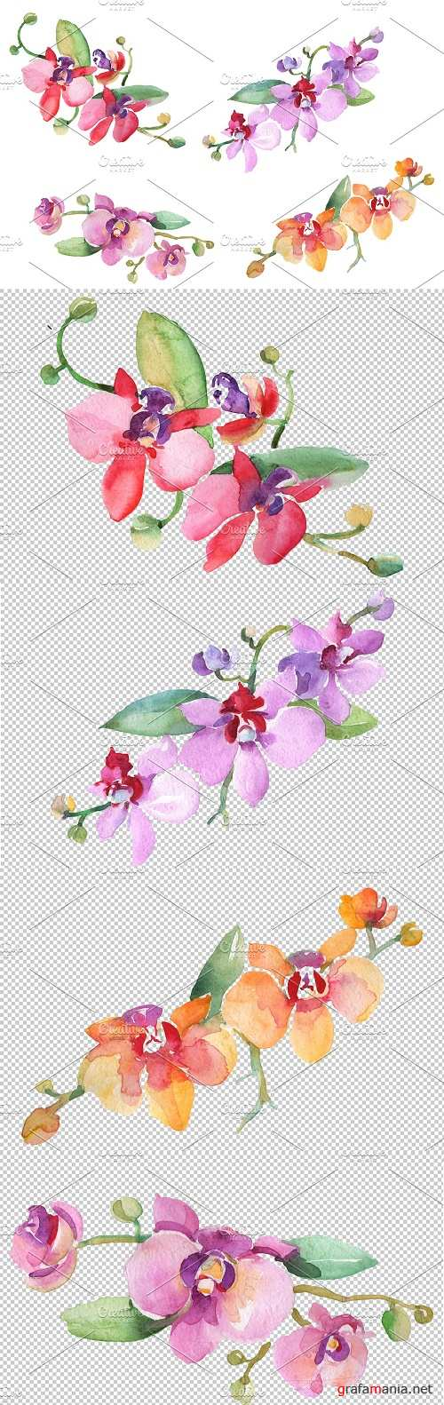Branch with orchids Watercolor png - 3616010