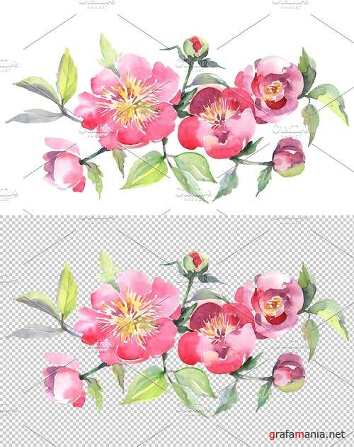 Bouquet with tea roses Watercolor - 3612091